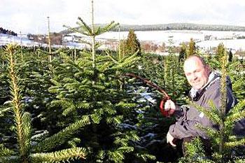Weihnachtsbaum Selber Schlagen Sauerland.Weihnachtsbaum Selber Schlagen In Schmallenberg Im Sauerland
